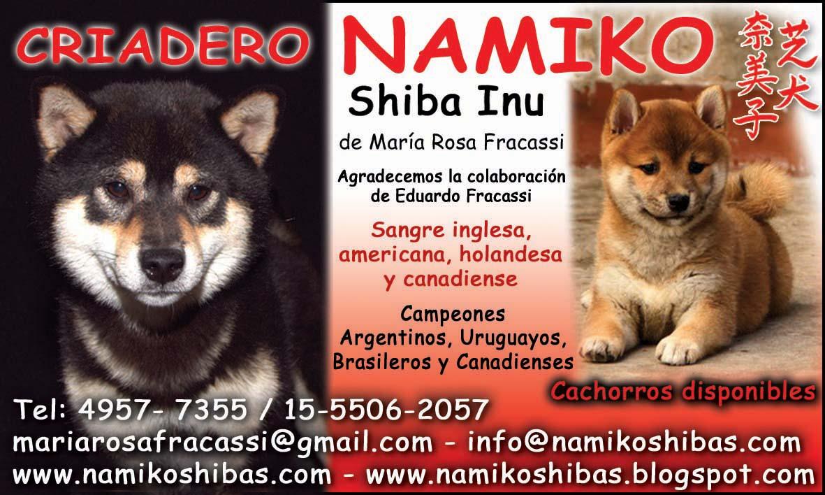 Aviso del Criadero Namiko - Cachorritos Shiba Inu Disponibles!!!