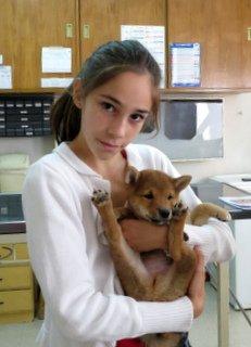 Shiba Inu Todd y con su duenia en la veterinaria
